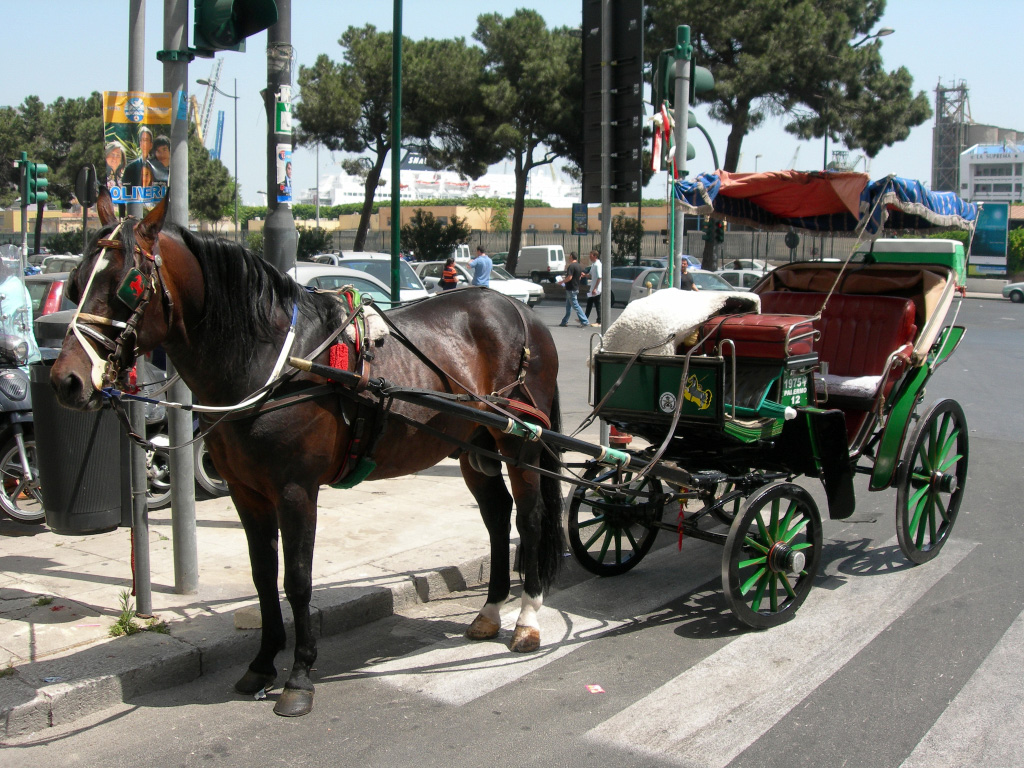 Carrozza per turisti - Ph. I. Mannarano