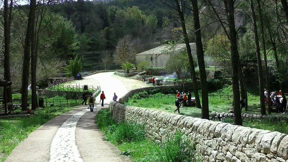 Parco Folrestale di Calaforno - ph. Margherita Riggio