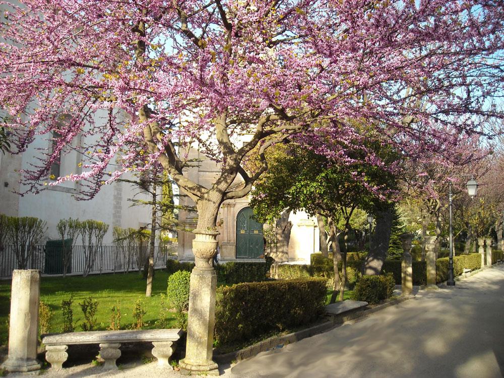 Giardini Iblei - ph. Turi Sicilia