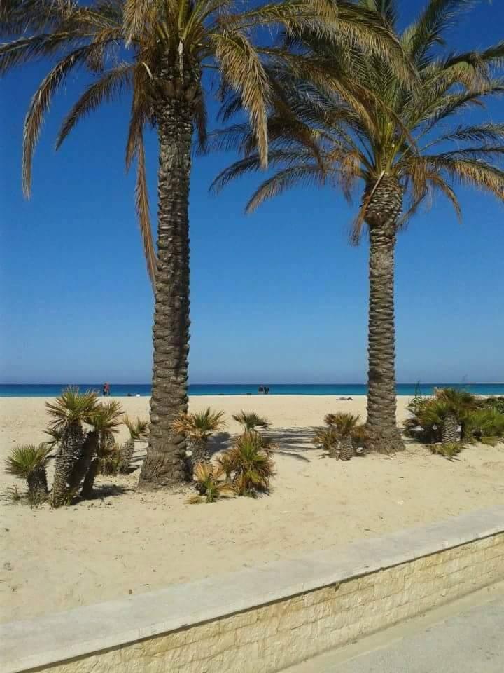 Spiaggia di San Vito lo Capo - ph. RobIanni