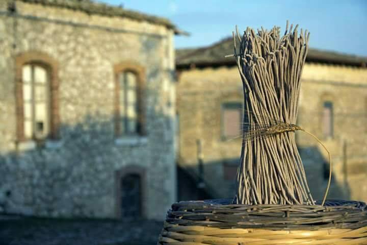 Borgo Santa Rita grani antichi di Sicilia -  ph. Giuseppe Sabella by fornosantarita.com