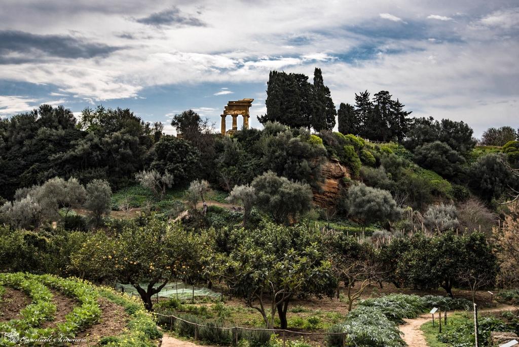 Giardino della Kolymbetra  ph Emanuele Simonaro