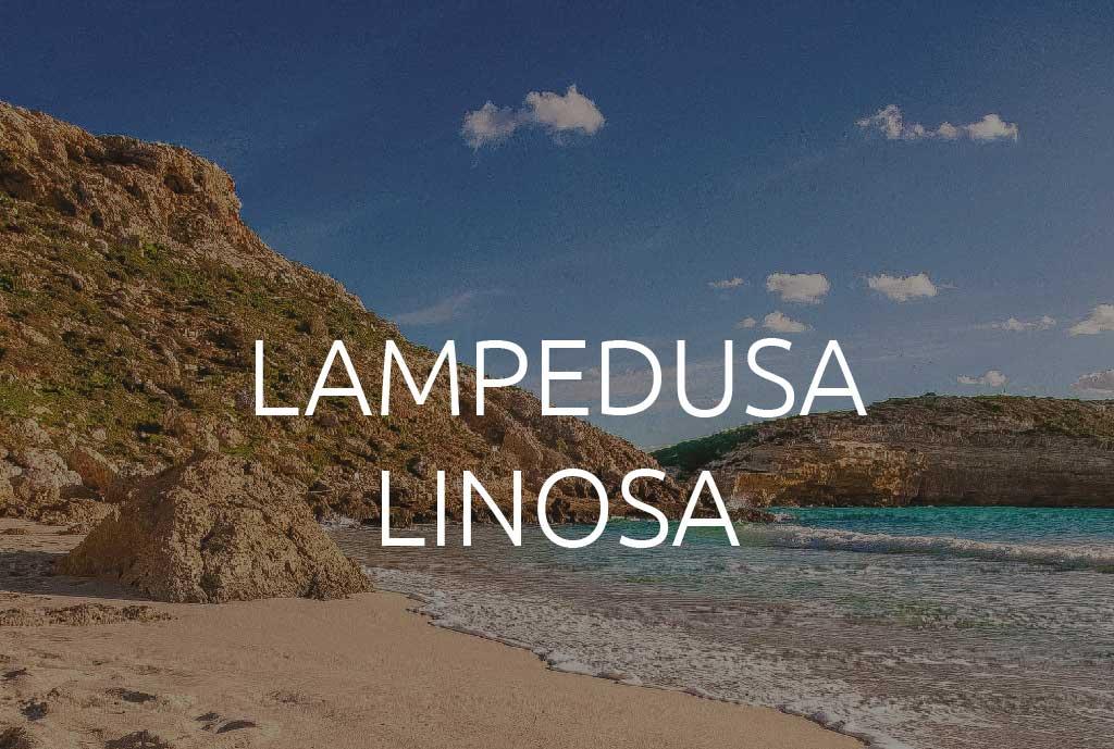 PSD_10cosea_LAMPED