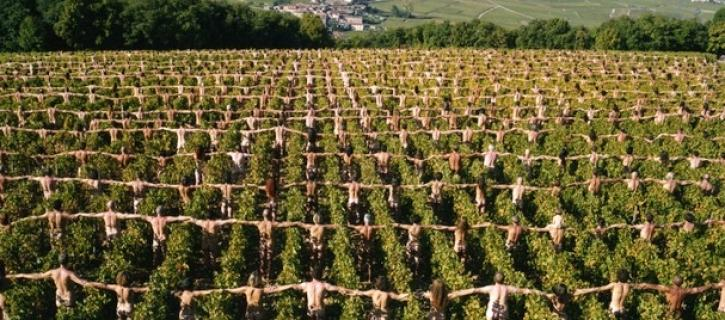 SPENCER-TUNICK-France-Burgundy-1-cropped