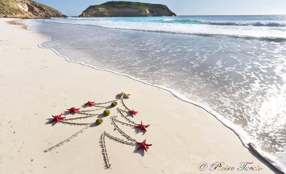 Natale sulla Spiaggia dei Conigli a Lampedusa - ph. Pietro Tuccio