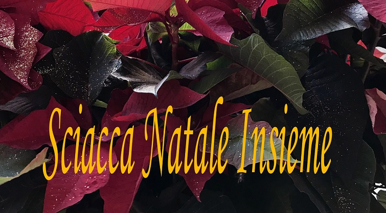 Sciacca Natale Insieme