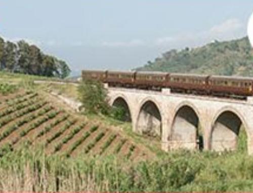 Il treno degli agrumi e frutti lungo la costa ionica