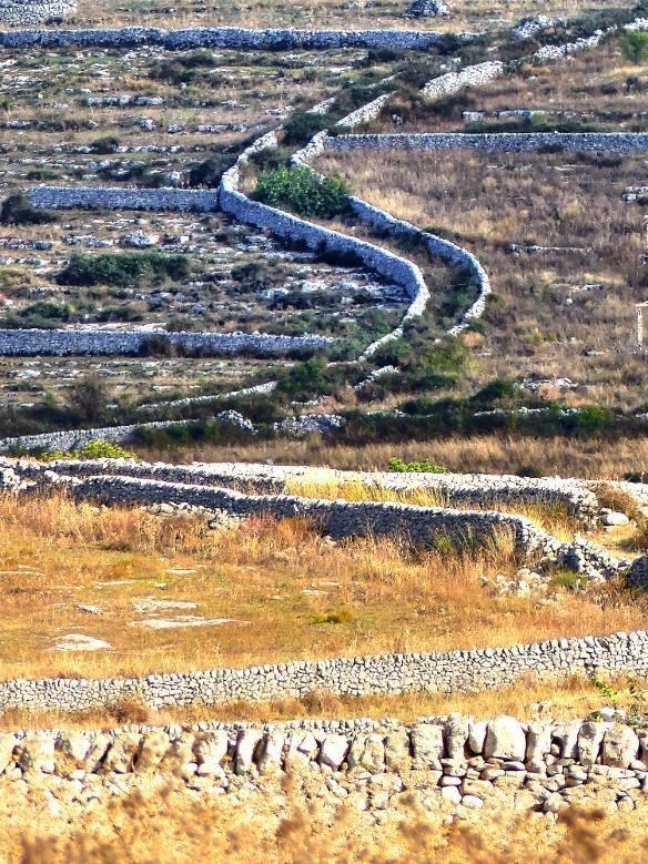 Dry stone walls - ph. Giulio Lettica