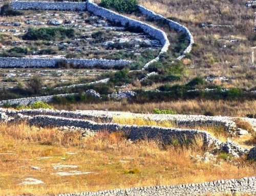 The art of dry stone walls