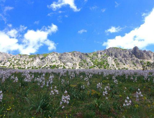 Geopark Madonie